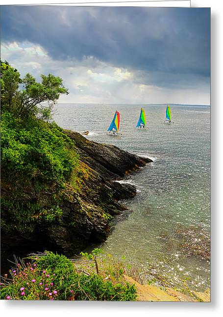 Perfect Day To Sail Greeting Card