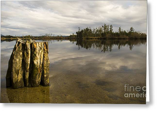 Perfect Lake Greeting Card by Tim Hester