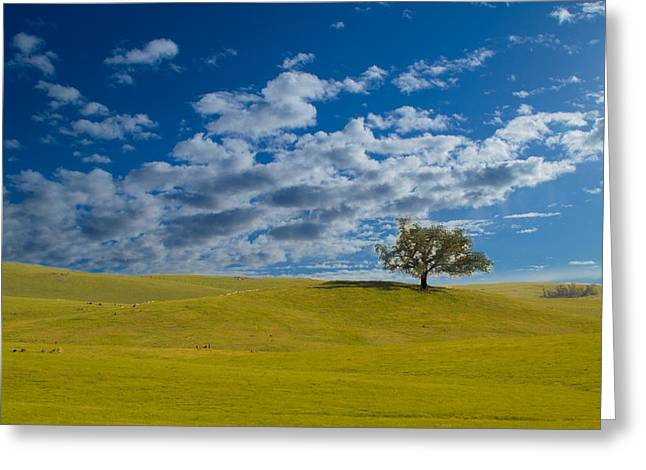 Perfect Landscape Greeting Card