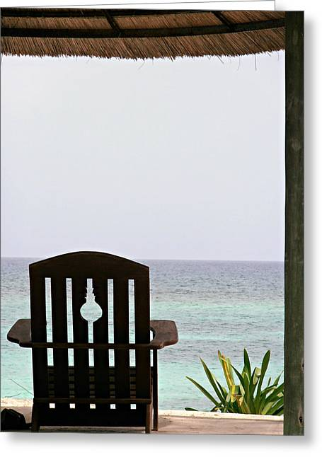 Perfect Resting Spot Greeting Card by Kimberly Perry