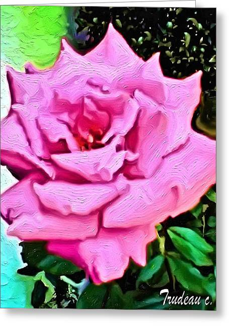 Perfect Rose Greeting Card