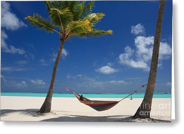 Perfect Tropical Beach Greeting Card by Karen Lee Ensley