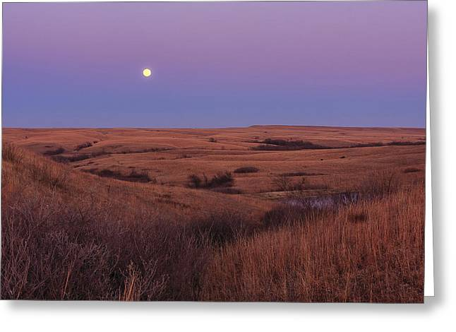 Greeting Card featuring the photograph Perigee Moon by Scott Bean