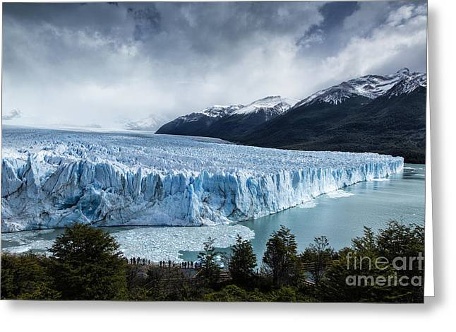 Perito Moreno Glacier Greeting Card by Timothy Hacker