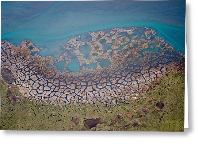 Permafrost Polygons On The Coast Greeting Card