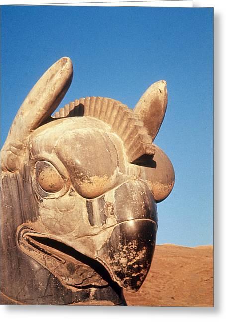 Persepolis, Iran Greeting Card by Allyn Baum