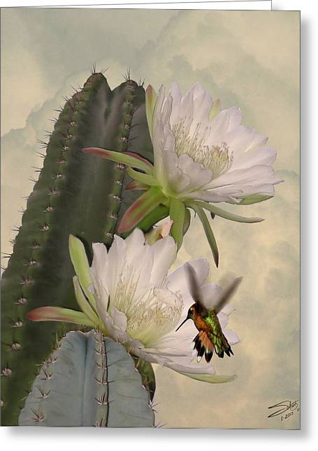 Peruvian Apple Cactus Flowers And Hummingbird Greeting Card