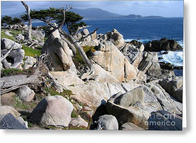Pescadero Point Greeting Card