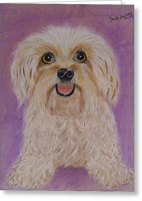 Pet Dog Greeting Card by David Hawkes