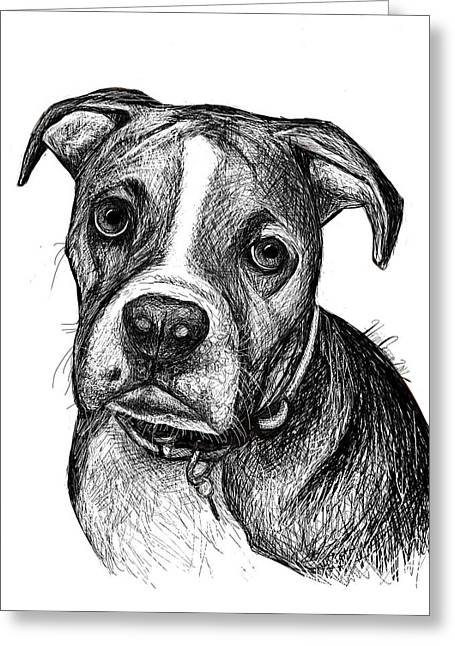 Pet Portraits Boxer Greeting Card by Heidi Creed