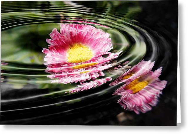 Petal Ripple Greeting Card by Zinvolle Art