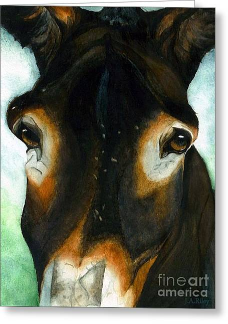 Pete The Mule Greeting Card