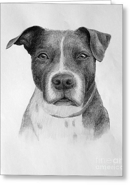 Greeting Card featuring the drawing Petey by Denise M Cassano