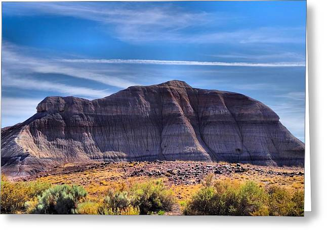 Petrified Forest Landscape Greeting Card by Dan Sproul