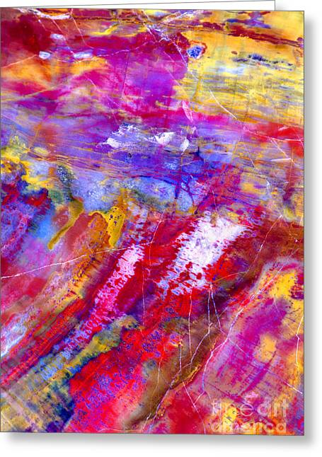 Petrified Wood - Color Of The Painted Desert Greeting Card by Douglas Taylor