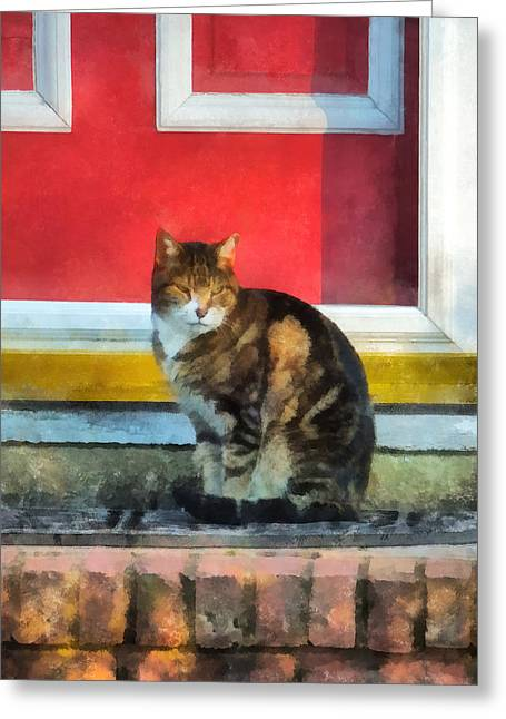 Pets - Tabby Cat By Red Door Greeting Card by Susan Savad