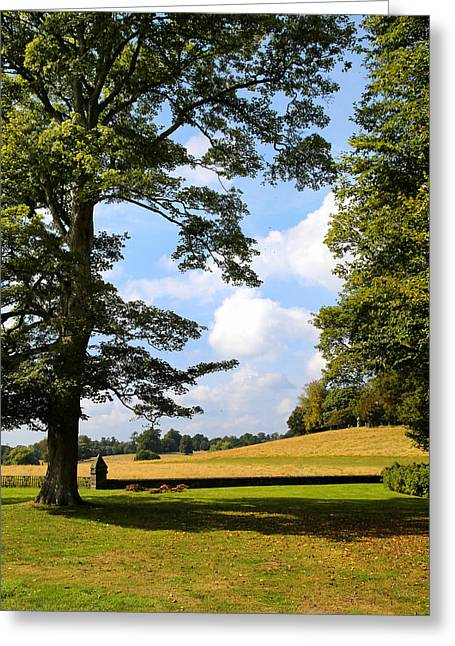 Greeting Card featuring the photograph Petworth Gardens By Mike-hope by Michael Hope