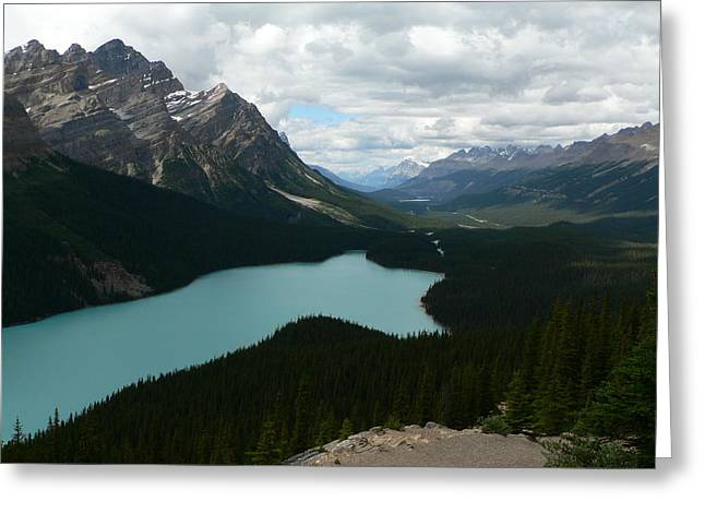 Peyote Lake In Banff Alberta Greeting Card