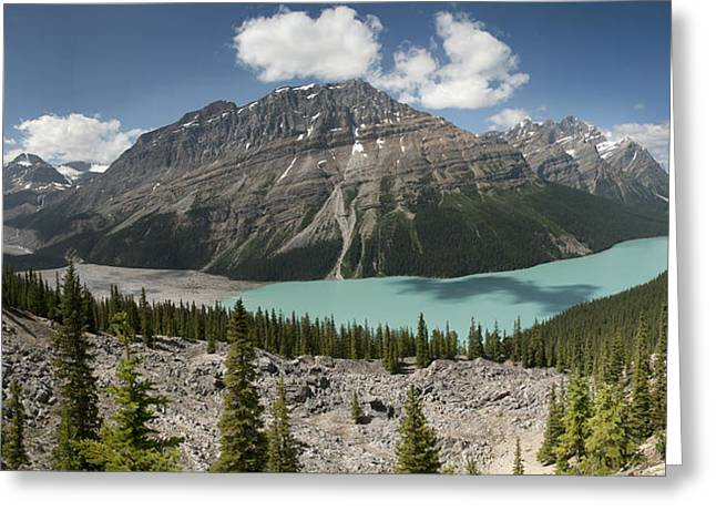 Peyto Panorama Greeting Card
