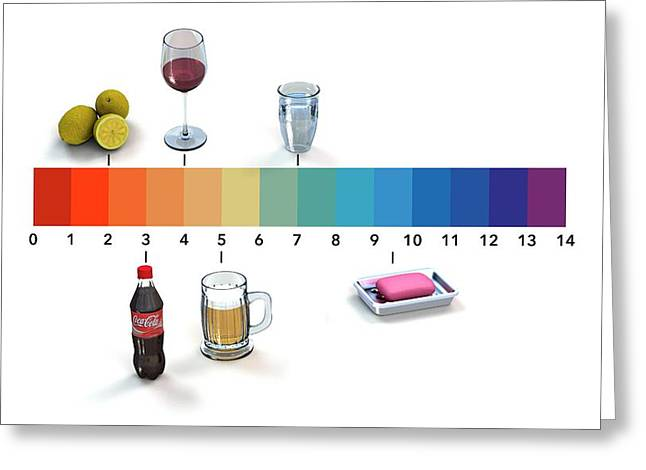 Ph Scale Greeting Card
