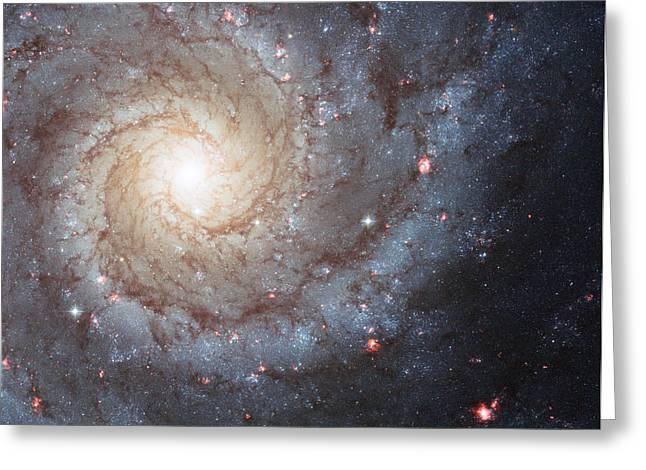 Phantom Galaxy M74 Greeting Card