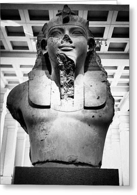 Pharaoh Greeting Card by CD Kirven