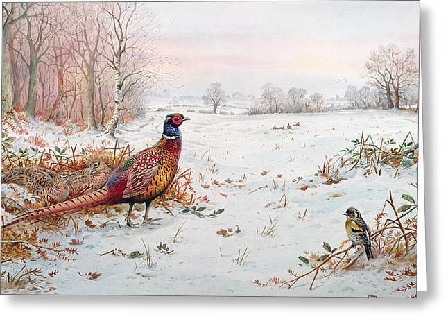 Pheasant And Bramblefinch In The Snow Greeting Card by Carl Donner