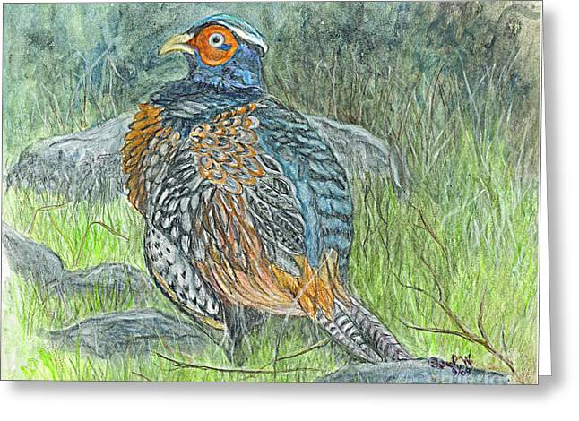 Greeting Card featuring the drawing Pheasant Common Male by Carol Wisniewski