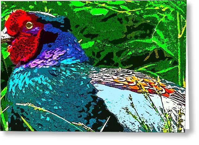 Pheasant Digiartwork Greeting Card