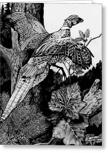 Pheasant In Flight Greeting Card