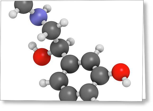 Phenylephrine Decongestant Drug Molecule Greeting Card