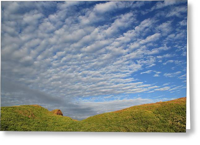 Phillip Island One Greeting Card