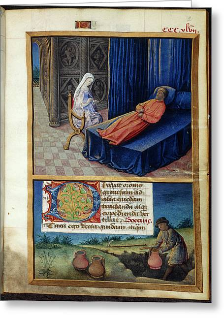 Philosophy And Boethius Greeting Card