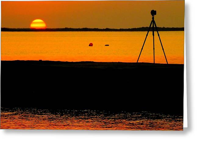 Photographer's Dream Greeting Card by Karen Wiles