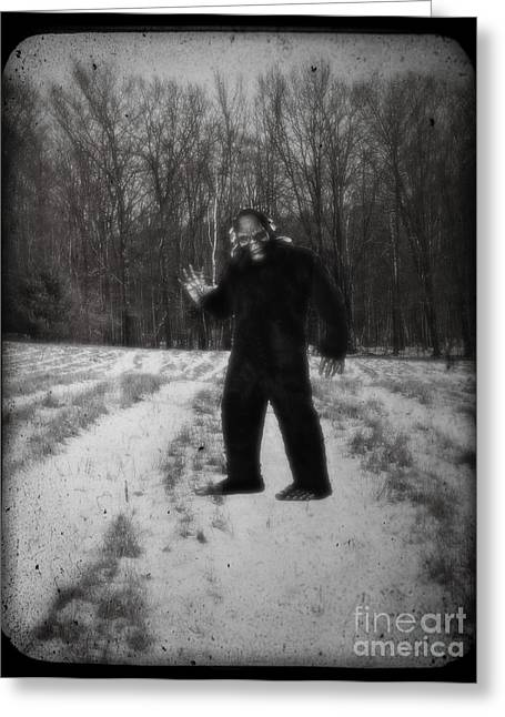 Photographic Evidence Of Big Foot Greeting Card by Edward Fielding