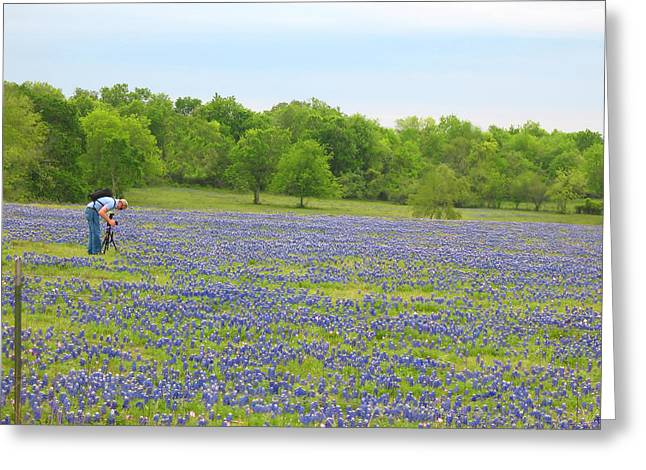 Photographing Texas Bluebonnets Greeting Card by Connie Fox