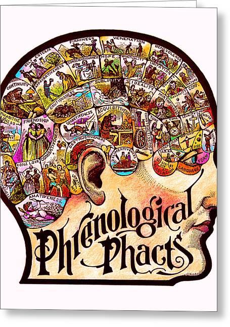 Phrenological Phacts Greeting Card
