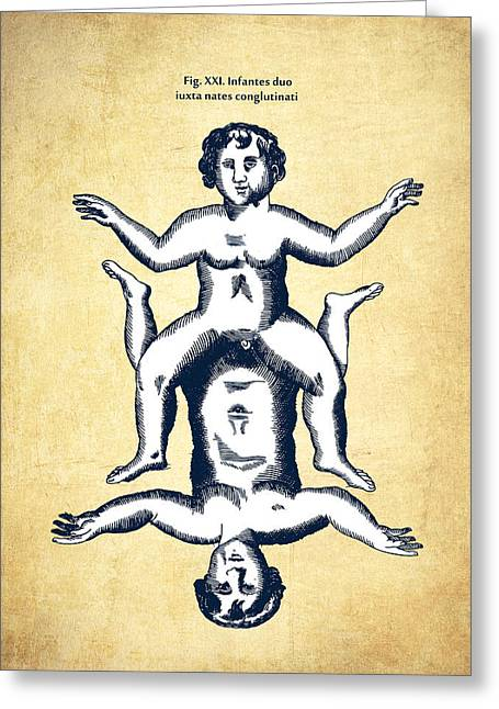Physica Curiosa 1662 - Page 706 - Vintage Greeting Card