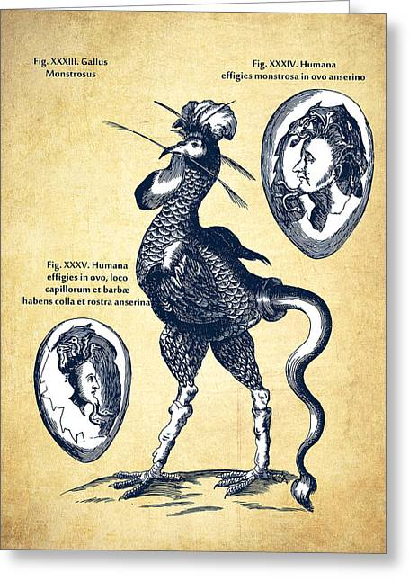 Physica Curiosa 1662 - Page 714 - Vintage Greeting Card