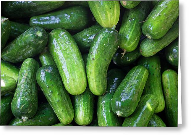 Pickling Cucumbers For Sale Greeting Card by Julien Mcroberts
