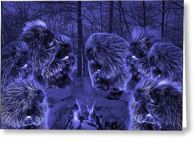 Picky Eaters In The Blue Moonlight Greeting Card