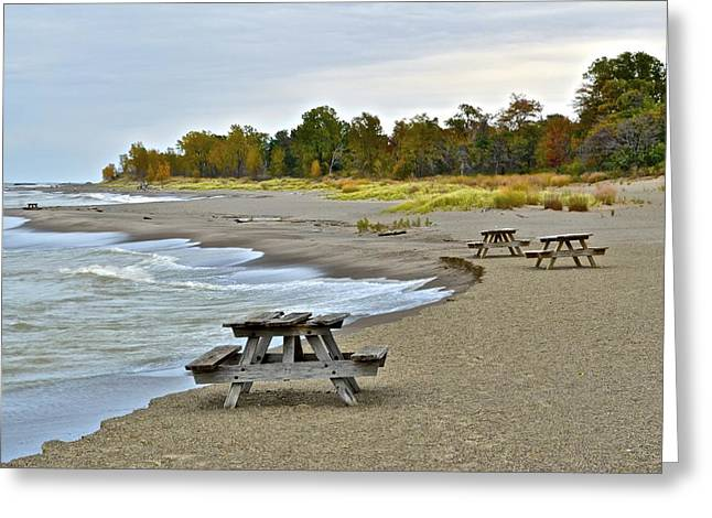 Picnic Beach Greeting Card by Starving  Artist