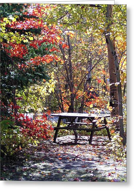 Greeting Card featuring the photograph Picnic Memories by Gigi Dequanne