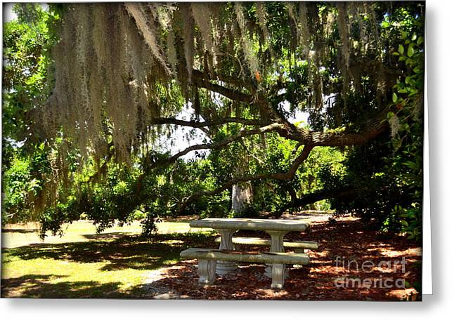 Picnic Under Spanish Moss  Greeting Card
