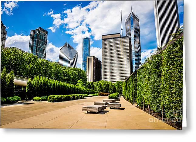 Picture Of Chicago Skyline With Millennium Park Trees Greeting Card