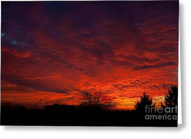 red sunset and trees silhouette in Warsaw  Greeting Card by Arletta Cwalina