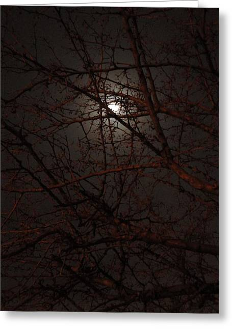 Pieces Of The Moon Greeting Card by Guy Ricketts