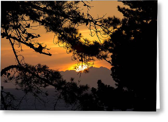 Piedras Blancas Sunset Greeting Card by Jose M Beltran