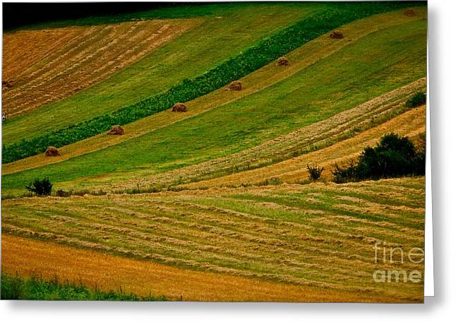 Pieniny Mountains - Pages Of My Diary. 14th August 2013. Greeting Card by  Andrzej Goszcz
