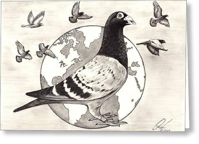 Pigeon Race Greeting Card
